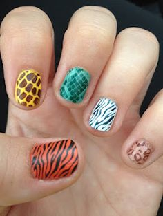 Maynicure Challenge #16: Recreate your favorite- Kate's Zoo Mani