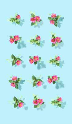 The owner of this domain has not yet uploaded their website. Iphone Wallpaper Tropical, Flowery Wallpaper, Cool Wallpaper, Mobile Wallpaper, Spring Wallpaper, Plant Aesthetic, Aesthetic Painting, Flower Backgrounds, Wallpaper Backgrounds