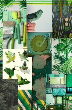 Lovely shades of green