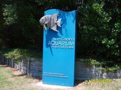 NC Aquarium ... Pine Knoll Shores
