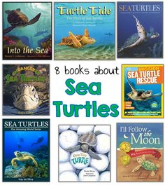 Books about sea turtles, crafts, and more!