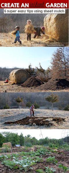 Homestead Honey | Create an Instant Garden with Sheet Mulching | http://homestead-honey.com