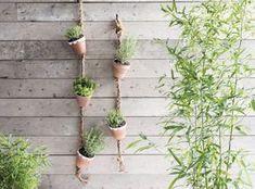 Summer Garden, Home And Garden, Garden Deco, Hanging Plants, Garden Planning, The Great Outdoors, Terracotta, Garden Design, Creative