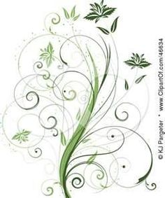 Beautiful Organic Green Plant With Tendril Leaves On White By KJ