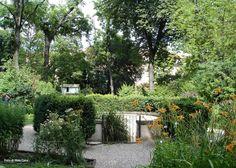 Il Meraviglioso Orto Botanico di Brera