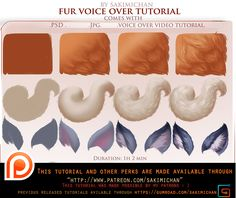 voice over lesson.Fur. (term 38) | Sakimi Chan on Patreon
