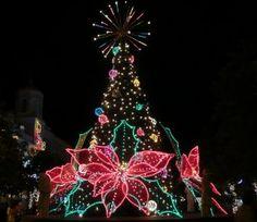 Christmas Lights in Old San Juan