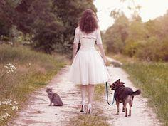 Un site de vente privée pour chiens et chats ouvrira bientôt ses portes