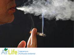#airlife #aire #previsión #virus #hongos #bacterias #esporas #purificación  purificación de aire Airlife te dice. aunque la contaminación del aire es menor que en décadas pasadas, en ciertos casos millones de personas siguen expuestas a niveles de polución ambiental mucho mayores a lo recomendado, por lo que esa población podría estar también en mayor riesgo de Alzheimer o Parkinson. http://www.airlifeservice.com