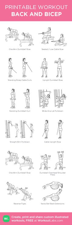 BACK AND BICEP: my visual workout created at WorkoutLabs.com • Click through to customize and download as a FREE PDF! #customworkout