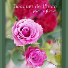 Bouquet de Photo 121002