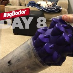 More ideas. Rug Doctor