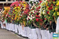 Feierliche Parade beim Willicher Schützenfest - Kreis Viersen - Lokales - Westdeutsche Zeitung