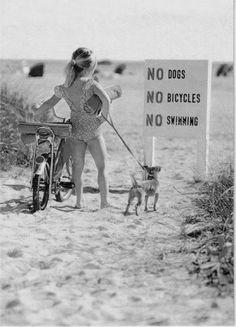 """"""" Chiens, vélos et baignade interdits. """"  Respecter certains interdits pour vivre en société...."""