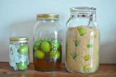 making of ume (plum) syrup