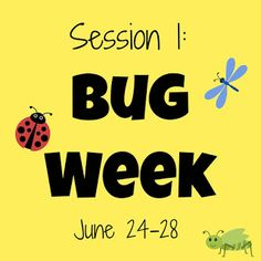 Toddler Approved!: Simple Bug Week Activities