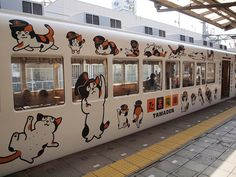 Many areas in Japan have their own sightseeing trains in which you can feel the beautiful essence of the local area. Japanese Cat, Japanese Culture, Cat Furry, Dog Cat, Japan Train, Web Magazine, Train Tracks, Street Art, Kittens Cutest