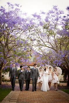 Wedding Photography Event Photographer, Bridesmaid Dresses, Wedding Dresses, Wedding Portraits, Wedding Photography, Fashion, Bridesmade Dresses, Bride Dresses, Moda