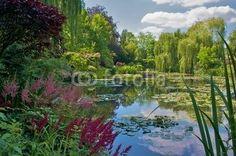 Jardin de Claude Monet, Giverny  #gallerydirect