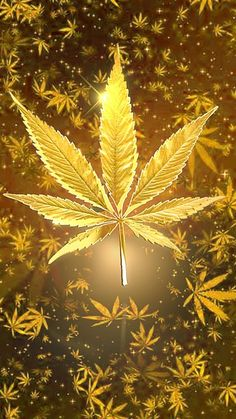 It's 420 somewhere. Relaxing holiday with golden green leaf. Weed Wallpaper, Skull Wallpaper, Galaxy Wallpaper, Golden Wallpaper, Weed Backgrounds, Wallpaper Backgrounds, Arte Bob Marley, Dope Wallpapers, Phone Backgrounds