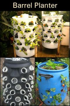 When recycling meets gardening. 3 Lively Simple Ideas: Vegetable Garden Diy Hacks vegetable garden layout how to build. 33 best hydroponic gardening for beginners design ideas 1 – Artofit Hydroponic Gardening, Hydroponics, Container Gardening, Organic Gardening, Vegetable Gardening, Verticle Vegetable Garden, Diy Planters, Garden Planters, 55 Gallon Plastic Drum