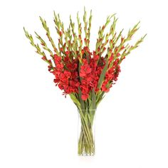 possible silk flower arrangement?