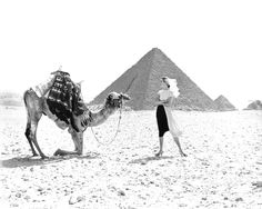 Richard Avedon | Dovima, dress by Claire McCardell at the Great Pyramid of Giza, Egypt, 1951