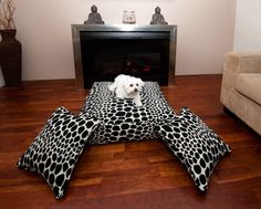 "The ""Onyx"" designer dog bed & scatter cushion set is a modern & stylish. All Ollie Blooms dog beds are made from commercial quality fabric & the inserts are made from ""A"" grade polyester which has been made from recycled water bottles."