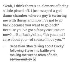 Sebastian Stan talking about following Steve.