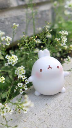 Cute Food Wallpaper, Wallpaper Stickers, Kawaii Wallpaper, Happy Birthday Drawings, Molang, Anime Figurines, Cute Art Styles, Cute Poster, Green Art