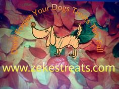 Don't forget to treat your pooch this fall.