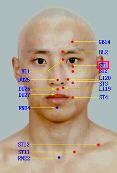Acupuncture points on the face.