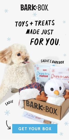 Get off BarkBox today! Praise your pup every month with a box of original toys and treats. Your dogs deserve the best! Yorkie Dogs, Pet Dogs, Dogs And Puppies, Pomsky Dog, Cute Baby Animals, Animals And Pets, Funny Animals, Bully Dog, Dog Items