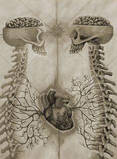 El amor entre antropólogos físicos ;)