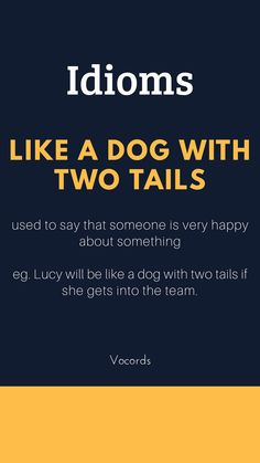 Like A Dog With Two Tails ~ used to say that someone is very happy about something; Lucy will be like a dog with two tails if she gets into the team. Slang English, Learn English Grammar, Learn English Words, English Phrases, English Idioms, English Language Learning, Advanced English Vocabulary, English Vocabulary Words, English Tips