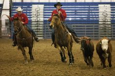 2015 Black Hills Stock Show Ranch Rodeo. CHECK OUT THE PHOTOS!