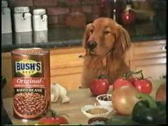 duke from bush's baked beans - Google Search