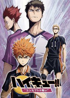 Два аниме-фильма «Волейбол!!»