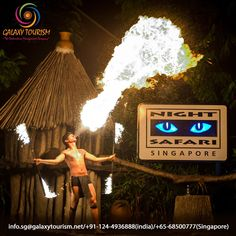Night Safari Singapore is the world's best night attraction to get near animals and provide full entertainment. Book Tickets on Galaxy Tourism.  http://goo.gl/XHQtmR