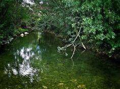 River in Greffeil, France  Photo by Linda Hobden
