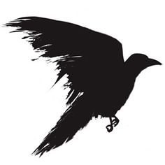 For the Red Crow tattoo - I like this sideview-in-flight pose for one of the crows; top view for the other?