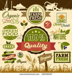 stock-vector-natural-organic-product-labels-emblems-logo-and-badges-set-of-fresh-organic-design-elements-and-180408407.jpg (450×470)