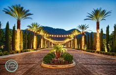 the entrance to the venue will dazzle at dusk Palm Desert, Blue Hour, Hdr, Palm Springs, Wedding Styles, Entrance, Stuff To Do, Beautiful Places, Around The Worlds