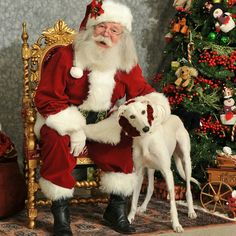 Kasper got to meet Santa too! He is available!