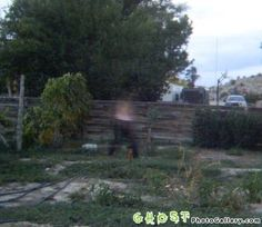Ghost in the lawn  This is a very strange photo which was taken in 2003, near Harare, Zimbabwe. This photo was taken in a lawn where suddenly a man appears. That man was wearing a black pant, but the upper half of his body is completely invisible. Now you decide what it is?