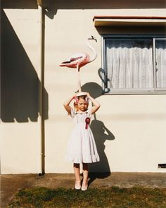 """Amy won first place for her performance art """" dance of the footless flamingo. Flamingo Art, Pink Flamingos, Yard Flamingos, Kid Styles, Light And Shadow, Vintage Colors, Color Photography, Children Photography, Cool Kids"""