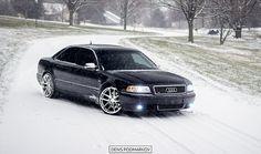 Audi D2 S8 Snow