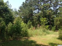 6137 Inman Circle #Conway #SC Price Reduced to $137,500! MLS# 1705898 - #Lot #Land #WaccamawRiver - Build Your Dream Home on 1.55 #Acres - Talk to #PaigeBird For More Info at 843.450.4773