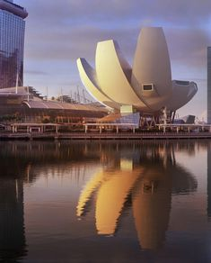 The ArtScience Museum at Marina Bay Sands by Safdie Architects