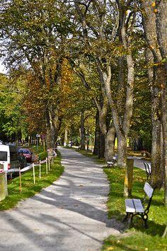 Path in Kuressaare, Estonia ♡ #VisitEstonia #ColourfulEstonia